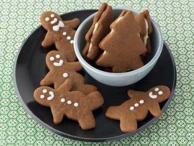 12-days-of-cookies-2009_alex-gingerbread_s4x3_lg