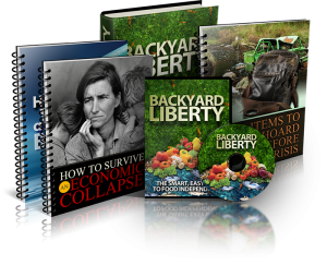 Backyard-liberty-book