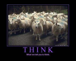 sheep-think-300x240