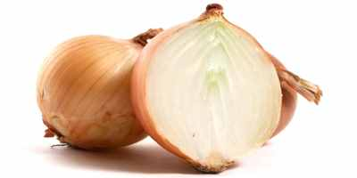 Onions-contains-a-toxin-substance-called-thiosulphate-that-destroys-red-blood-cells