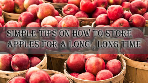 imple tips on how to store apples for a long, long time