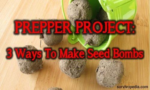 SVP-seed-bombs