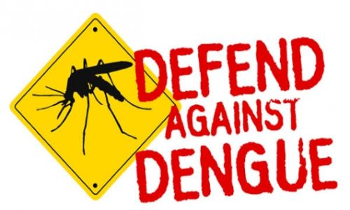 Locally-Acquired Case of Dengue Fever Confirmed in Miami-Dade Florida (Second Confirmed case in FL)